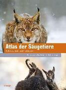 Cover-Bild zu Atlas der Säugetiere - Schweiz und Liechtenstein