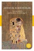 Cover-Bild zu Schnitzler, Arthur: Traumnovelle und andere Erzählungen
