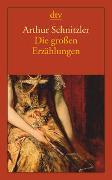 Cover-Bild zu Schnitzler, Arthur: Die großen Erzählungen