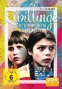 Cover-Bild zu Pfaff, Helga: Zwillinge oder Nimm dir ein Beispiel an Evelin