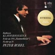Cover-Bild zu Rösel / Beethoven: Klaviersonaten Nr. 24 & 29 von Beethoven, Ludwig van (Komponist)