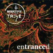 Cover-Bild zu Entranced von Mantra Tribe