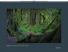 Cover-Bild zu Magische Wälder 2021 von KUNTH Verlag (Hrsg.)