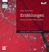 Cover-Bild zu Tschechow, Anton: Erzählungen (2 mp3-CDs)