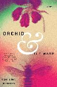 Cover-Bild zu Hughes, Caoilinn: Orchid and the Wasp