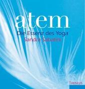 Cover-Bild zu Sabatini, Sandra: Atem