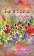 Cover-Bild zu Sabatini, Sandra: Like a Flower