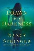 Cover-Bild zu Springer, Nancy: Drawn Into Darkness