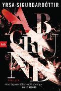 Cover-Bild zu Sigurdardóttir, Yrsa: Abgrund