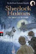 Cover-Bild zu Doyle, Arthur Conan: Der Hund von Baskerville