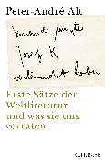 Cover-Bild zu Alt, Peter-André: 'Jemand musste Josef K. verleumdet haben ?'