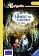 Cover-Bild zu Im Labyrinth der Finsternis von Lenk, Fabian