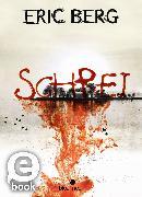 Cover-Bild zu Schrei (eBook) von Berg, Eric