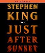 Cover-Bild zu King, Stephen: Just After Sunset