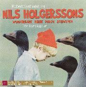 Cover-Bild zu Nils Holgerssons wunderbare Reise durch Schweden von Lagerlöf, Selma