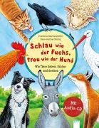 Cover-Bild zu Schlau wie der Fuchs, treu wie der Hund - Wie Tiere lieben, fühlen und denken von Reichenstetter, Friederun
