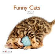 Cover-Bild zu Funny Cats 2021 A&I INT 30x30