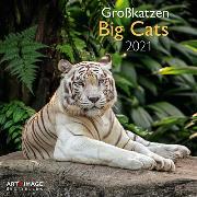 Cover-Bild zu Big Cats 2021 A&I INT 30x30