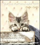 Cover-Bild zu Niedliche Katzenkinder 2022 - Wand-Kalender - Tier-Kalender - 30x34 von teNeues Calendars