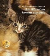 Cover-Bild zu Ein Kätzchen kommt zur Welt von Fischer-Nagel, Heiderose