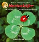 Cover-Bild zu Marienkäfer von Fischer-Nagel, Heiderose