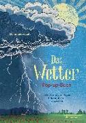 Cover-Bild zu Biederstädt, Maike: Das Wetter. Pop-up-Buch
