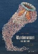 Cover-Bild zu Biederstädt, Maike: Wunderwesen aus der Tiefe. Ernst Haeckel
