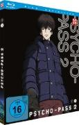 Cover-Bild zu Fukami, Makoto: Psycho-Pass - Staffel 2.2