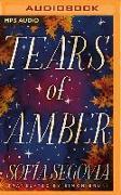 Cover-Bild zu Tears of Amber von Segovia, Sofía