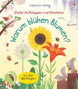 Cover-Bild zu Erstes Aufklappen und Verstehen: Warum blühen Blumen? von Daynes, Katie