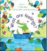 Cover-Bild zu What Are Feelings? von Daynes, Katie