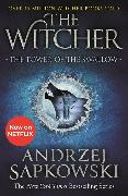 Cover-Bild zu Sapkowski, Andrzej: The Tower of the Swallow