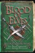 Cover-Bild zu Sapkowski, Andrzej: Blood of Elves (eBook)