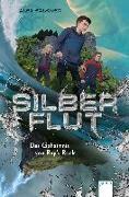 Cover-Bild zu Silberflut (1). Das Geheimnis von Ray's Rock von Falkner, Alex