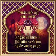 Cover-Bild zu Nights, One Thousand and One: Sagan af hinum fjörutíu vezírum og drottningunni (Audio Download)
