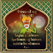 Cover-Bild zu Nights, One Thousand and One: Sagan af öðrum karlinum og báðum svörtu hundunum (Audio Download)