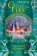 Cover-Bild zu City of Heavenly Fire von Clare, Cassandra