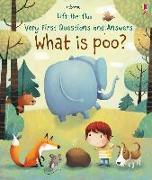 Cover-Bild zu What is Poo? von Daynes, Katie