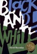 Cover-Bild zu Black and White von Macaulay, David