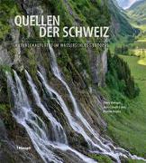 Cover-Bild zu Quellen der Schweiz von Wenger, Rémy