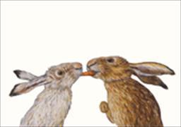 Cover-Bild zu Karottenkuss Postkarte