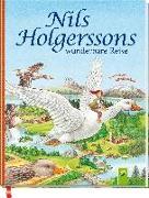 Cover-Bild zu Ameling, Anne: Nils Holgerssons wunderbare Reise