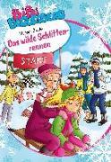Cover-Bild zu Gürtler, Stephan: Bibi Blocksberg - Das wilde Schlittenrennen