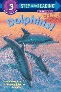 Cover-Bild zu Dolphins! von Bokoske, Sharon
