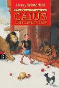 Cover-Bild zu Caius geht ein Licht auf von Winterfeld, Henry