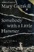 Cover-Bild zu Gaitskill, Mary: Somebody with a Little Hammer