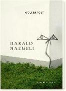 Cover-Bild zu Wolkenpost von Naegeli, Harald