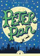 Cover-Bild zu Peter Pan von Barrie, J M