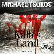 Cover-Bild zu Kaltes Land (ungekürzt) (Audio Download) von Tsokos, Michael