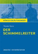 Cover-Bild zu Theodor Storm: Der Schimmelreiter von Lowsky, Martin (Bearb.)